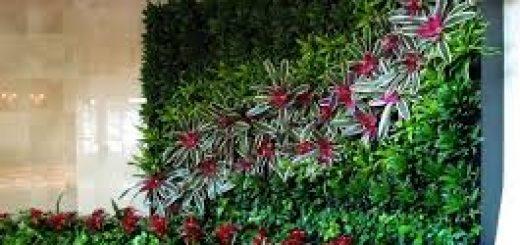 Jasa Taman Vertikal Garden